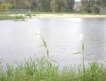 Zbiornik Wodny Koprzywianka